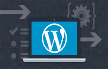 wordpress internship chennai